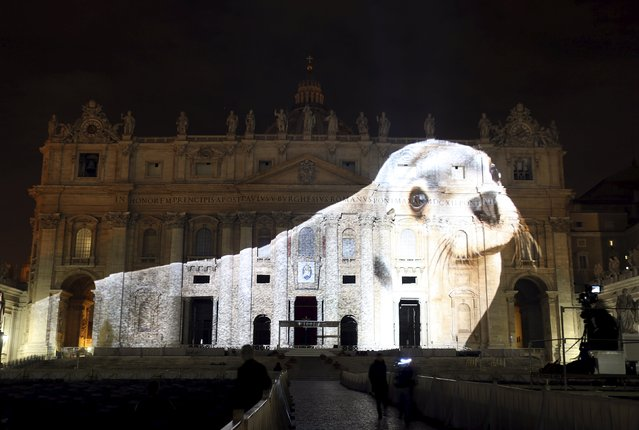 """A picture of a seal, part of an art projection featuring images of humanity and climate change artistically rendered by Obscura Digital, is projected onto the facade of St. Peter's Basilica, as part of an installation entitled """"Fiat Lux: Illuminating our Common Home"""" as a gift to Pope Francis on the opening day of the Extraordinary Jubilee, at the Vatican, December 8, 2015. (Photo by Stefano Rellandini/Reuters)"""