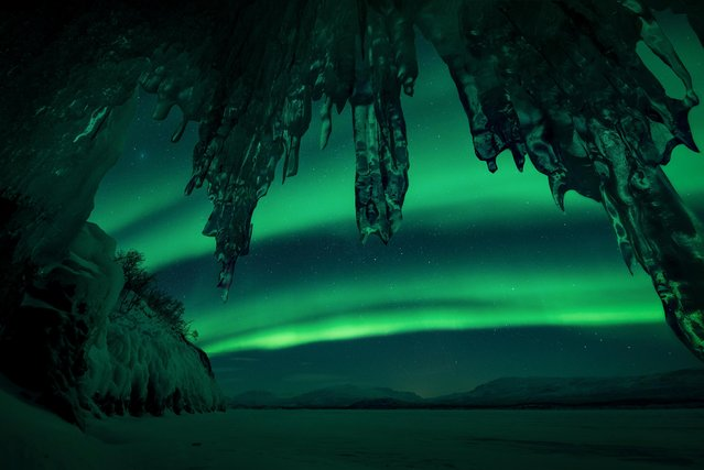 A remarkable display of the Northern Lights reflecting shades of green and yellow on the snow. Squeezed into a tiny cave on Lake Torneträsk, in Swedish Lapland, in minus 26 degrees. (Photo by Arild Heitmann/Astronomy Photographer of the Year 2018)