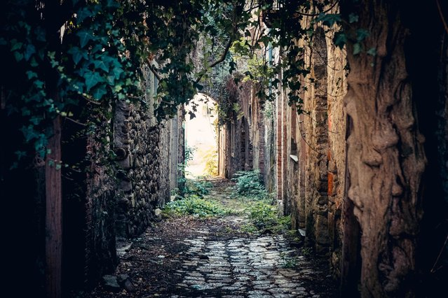 A deserted alley in the ghost town of Apice, in the province of Benevento, southern Italy, 22 November 2016. (Photo by Cesare Abbate/EPA)