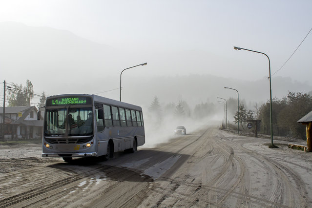 A bus drives along an ash covered road, caused by the eruption of Chile's Calbuco volcano in Villa La Angostura, in southern Argentina, Thursday, April 23, 2015. The volcano erupted Wednesday afternoon for the first time in more than four decades, and then had another outburst early Thursday. No injuries are reported but one hiker remains missing. (Photo by Federico Grosso/AP Photo)