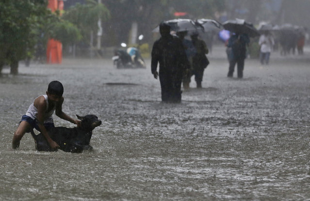 A boy plays with his pet dog in a waterlogged street during monsoon rains in Mumbai, India, Monday, July 1, 2019. India's monsoon season runs from June to September. (Photo by Rafiq Maqbool/AP Photo)