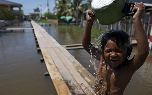A boy pours water on himself as he stands on a makeshift walkway above a flooded street from the rising Rio Solimoes, one of the two main branches of the Amazon River, in Careiro da Varzea of Amazonas State, Brazil, June 30, 2015. (Photo by Bruno Kelly/Reuters)