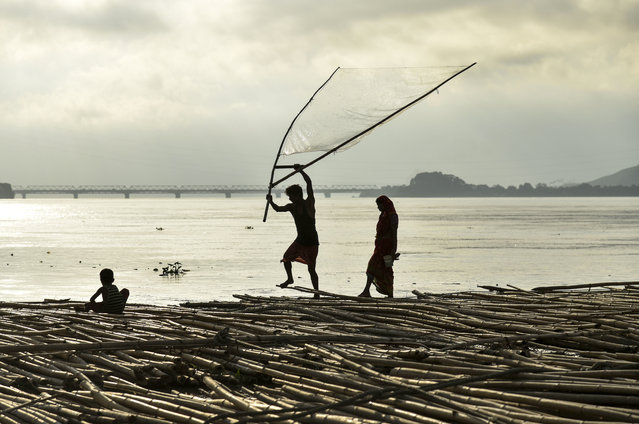A man fishes along with his family as they stand on floating bamboo logs in the Brahamaputra river in Guwahati in the northeastern state of Assam on September 14, 2019. (Photo by David Talukdar/AFP Photo)