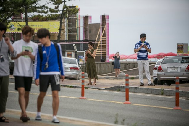South Koreans play Pokemon Go on July 15, 2016 in Sokcho, South Korea. South Korea is not one of the initial Pokemon Go released countries, nor is the game likely to be released officially any time soon as the South Korean government does not allow Google to use its map; however, South Korean game enthusiasts are now visiting a handful of loophole areas in the north eastern side of the country near the border of North Korea to join the global frenzy of Pokemon Go. (Photo by Jean Chung/Getty Images)