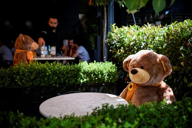 A large teddy bear, used to enforce social distancing, is pictured sitting at a cafe in Pristina on July 23, 2020, as Kosovo authorities announce new measures to fight against the resurgence of the COVID-19, the novel coronavirus. (Photo by Armend Nimani/AFP Photo)