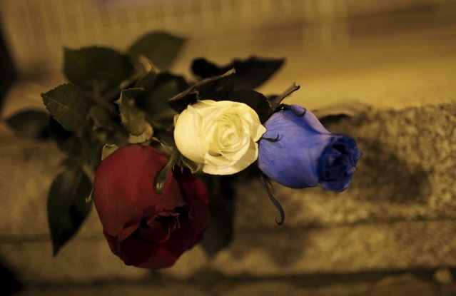 Blue, white and red roses, in the colors of the French flag, lie on the ground in tribute to the victims of Paris attacks in Tbilisi, Georgia, November 14, 2015. (Photo by David Mdzinarishvili/Reuters)