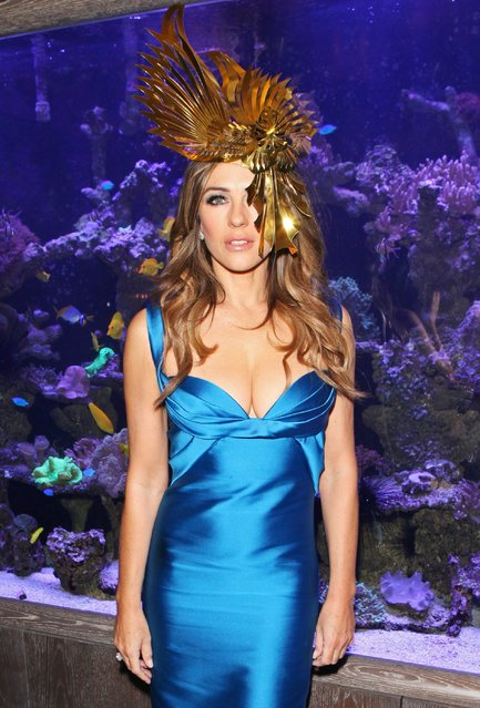 Elizabeth Hurley attends a VIP dinner to celebrate The Animal Ball 2016 presented by Elephant Family at s*xy Fish on November 22, 2016 in London, England. (Photo by David M. Benett/Dave Benett/ Getty Images for Elephant Family)