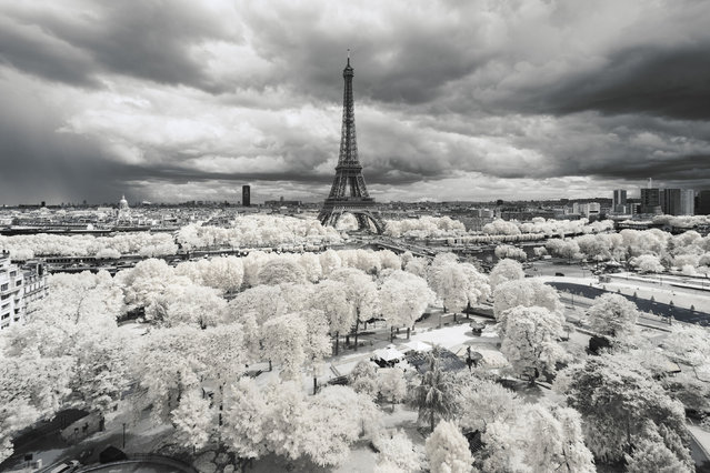 Photographer Pierre-Louis Ferrer shows viewers the beauty of France in a whole new light, shooting the country in beautiful infrared. Ferrer's images are as enchanting as they are intriguing, displaying a whole new variation of color in shrubs, grass and trees, as well as famous landmarks. In some of Ferrer's works, the foliage is an eye-catching canary yellow – a stark contrast to the more normal shades in the remainder of the images. In other works, whole forests glow red, giving the French countryside an otherworldly look. (Photo by Pierre-Louis Ferrer/Caters News Agency)