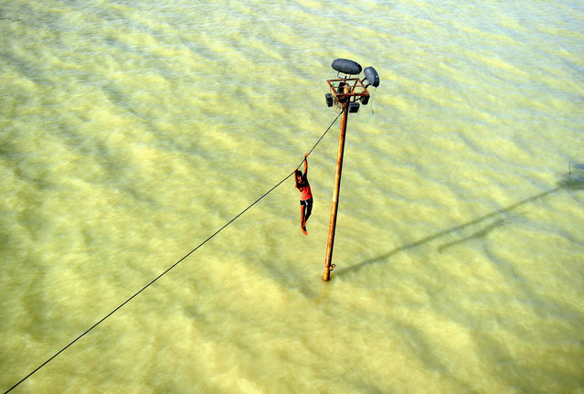 An Indian youth dangles from a power line before diving into the floodwaters of an overflowing Ganges river in Allahabad on August 6, 2013. (Photo by Sanjay Kanojia/AFP Photo)