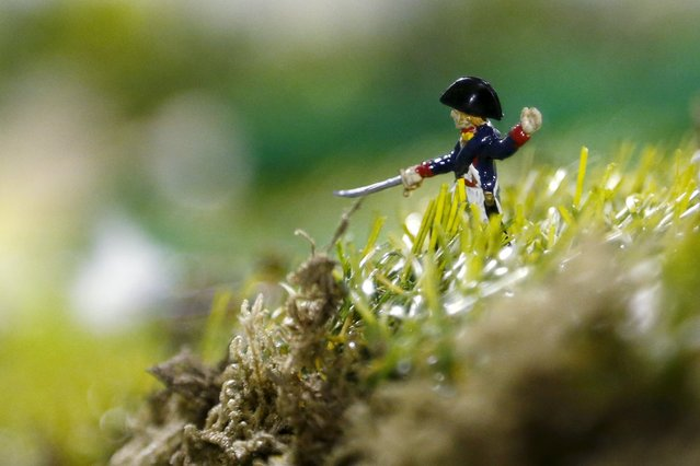 A figurine representing a French officer of the Tirailleurs is seen on a 40-square-metre miniature model of the June 18, 1815 Waterloo battlefield, in Diest, Belgium, in this picture taken on April 29, 2015. (Photo by Francois Lenoir/Reuters)