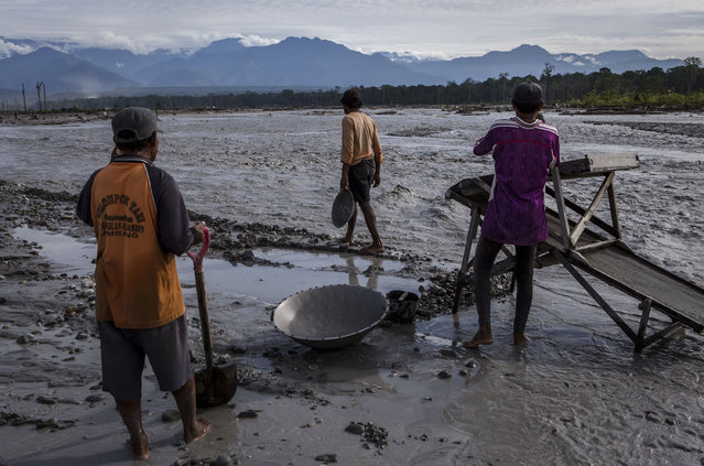 Illegal gold miners sift through sand and rock as they pan for gold at the Aikwa river on February 4, 2017 in Timika, Papua Province, Indonesia. Indonesia produces over 70 billion dollars in gold a year and is home to the largest gold mine and the third largest copper mine in the world, the Grasberg mine, which is located at West Papua. According to reports, the Grasberg mine, owned Freeport McMoRan, dumps as much as 200,000 tonnes of mine waste directly into the Aikwa delta system every day, turning thousands of hectares of forest and mangroves into wasteland. Indonesia continues to face various environmental problems since the gold rush and has one of the worst mercury problems from small-scale gold mining where miners usually operate without required permits. On the average, miners are able to get one gram of gold per day, which is equivalent to around 400,000 rupiah or US$30. Indigenous tribes in West Papua such as the Kamoro are still trying to make a living from fishing and foraging for food. They claim that the tailing from the gold mines have raised the riverbed, suffocating fishes, oysters and shrimps which the Kamoro people rely on for food and their livelihood. (Photo by Ulet Ifansasti/Getty Images)