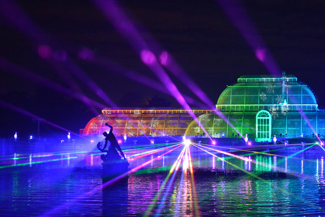 The Palm House at Kew Gardens is illuminated with a light show during a preview for the Christmas at Kew event on November 19, 2019 in London, England. (Photo by Jim Dyson/Getty Images)