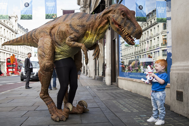 "Tristan Robertson-Jeyes, aged 3, plays with a ""Teksta T-Rex"" toy dinosaur outside Hamley's toy shop on June 26, 2014 in London, England.  The toy dinosaur, which retails for 75 GBP, is included in Hamleys' predictions for the top selling toys for Christmas 2014. (Photo by Rob Stothard/Getty Images)"