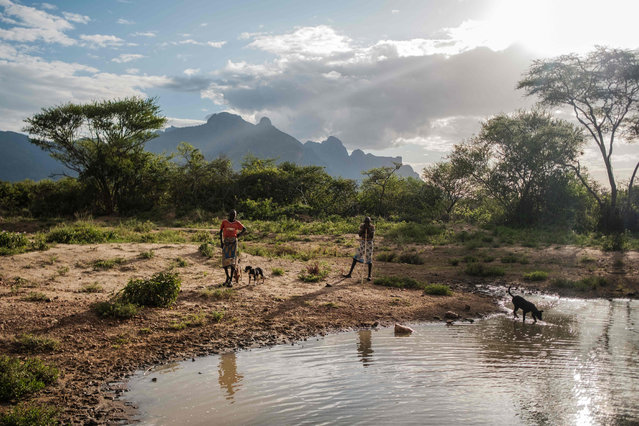 Residents and their dogs stand next to a water hole in Nakaprit on February 15, 2020. Nakaprit is home to traditional pastorialists who depend on their cattle for survival and with the threat of locust invasions, locals are worried the vegetation will be destroyed and their cows won't be able to feed. (Photo by Sumy Sadurni/AFP Photo)