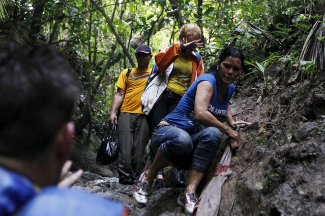 Cuban migrant Yamilen Arbelo, 40, climbs down a slope as she crosses the border from Colombia through the jungle into La Miel, in the province of Guna Yala, Panama November 29, 2015. (Photo by Carlos Jasso/Reuters)