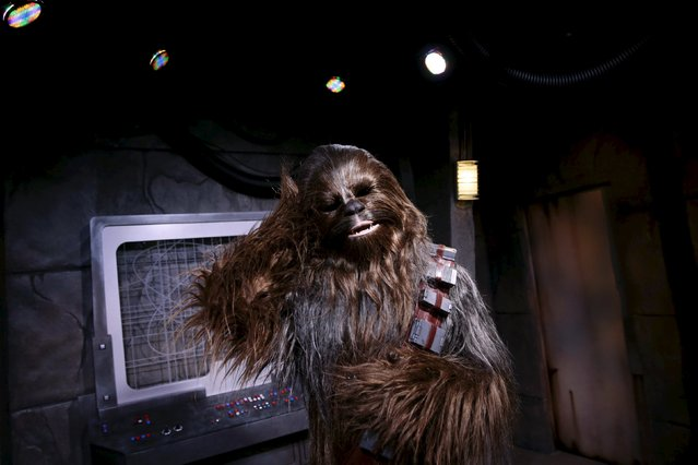 The Star Wars character Chewbacca grooms himself during the Star Wars Launch Bay grand opening at Disney's Hollywood Studios in Orlando, Florida December 4, 2015. (Photo by Scott Audette/Reuters)