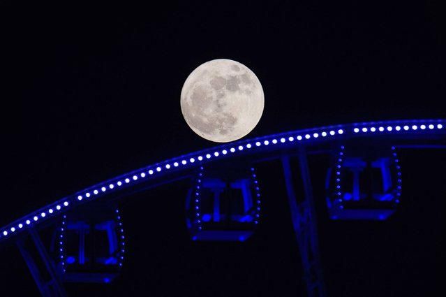"""A """"supermoon"""" is seen rising beyond a ferris wheel in Hong Kong on November 14, 2016. Skygazers headed to high-rise buildings, ancient forts and beaches on November 14 to witness the closest """"supermoon"""" to Earth in almost seven decades, hoping for dramatic photos and spectacular surf. The moon will be the closest to Earth since 1948 at a distance of 356,509 kilometres (221,524 miles), creating what NASA described as """"an extra-supermoon"""". (Photo by Anthony Wallace/AFP Photo)"""
