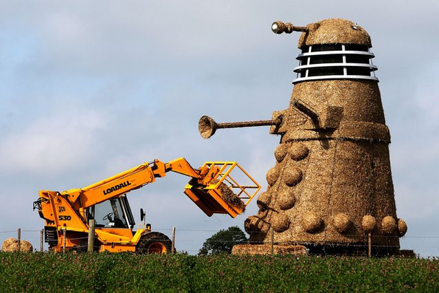 This 35ft straw sculpture of a Dalek is on display at Snugburys Ice Cream Farm in Cheshire, on August 3, 2013. (Photo by Peter Byrne/PA Wire)