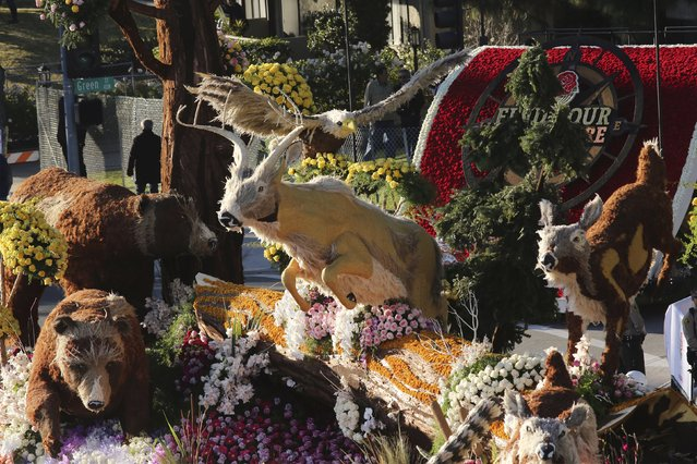 The Western Asset Management Company float moves through 127th Rose Parade in Pasadena, California January 1, 2016. (Photo by David McNew/Reuters)