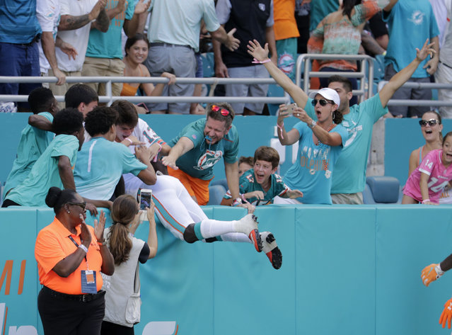 Miami Dolphins wide receiver Jakeem Grant leaps into the stands to celebrate a touch down with fans during the second half of an NFL football game against the Oakland Raiders, Sunday, September 23, 2018 in Miami Gardens, Fla. (Photo by Lynne Sladky/AP Photo)