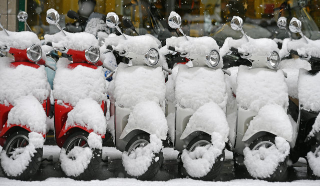 Vespas are covered with snow on a street in Zurich, Switzerland, 10 January 2019. Media reports state that many regions in Austria, Germany, Switzerland and northern Italy have been affected by heavy snowfalls in the last days. Weather forecasts warn that the snowstorms could cause roadblocks and increased avalanche danger in many parts of the affected regions. (Photo by Walter Bieri/EPA/EFE)