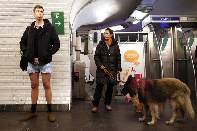 """A passenger without his pants waits for a train during the """"No Pants Subway Ride"""" event at a subway station in Paris January 12, 2014. (Photo by Benoit Tessier/Reuters)"""