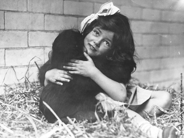 circa 1930:  A little girl with a ribbon in her hair cuddles a monkey