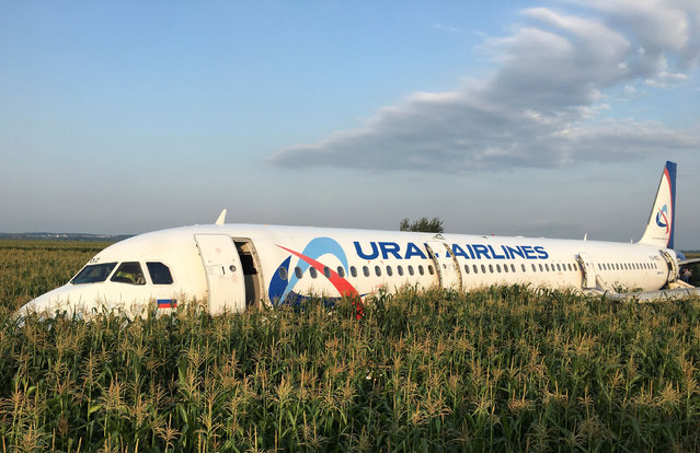 A view shows the Ural Airlines Airbus 321 passenger plane following an emergency landing in a field near Zhukovsky International Airport in Moscow Region, Russia August 15, 2019. All 226 passengers and even crew were reported to have evacuated from the Russian aircraft, but there were reports of injuries. (Photo by Reuters/Stringer)