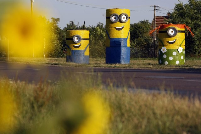 Minions of the American computer-animated comedy film, made from straw bales, are seen at Tiszaigar, 150 kms east of Budapest, Hungary, Friday, July 10, 2015, on the occasion of the movie's Hungarian premier. (Photo by Janos Bugany/MTI via AP Photo)