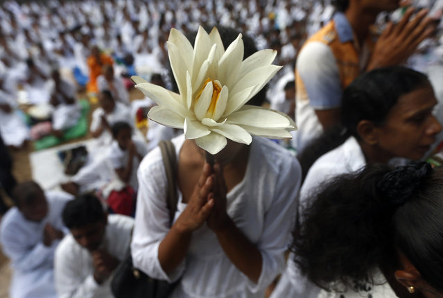 A Buddhist devotee worships at Kelaniya temple in Colombo on Vesak Day May 14, 2014. Vesak Day, which is celebrated on May 14 and 15 in Sri Lanka, commemorates the birth, enlightenment and death of Buddha. (Photo by Dinuka Liyanawatte/Reuters)