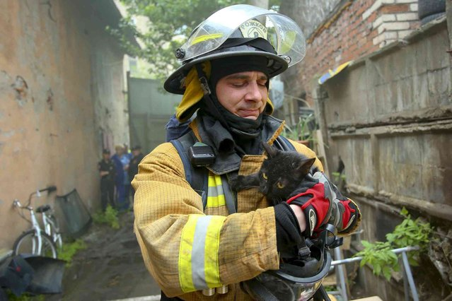 In this photo provided by Russian Emergency Situations Ministry for Northwest press service, a Russian emergency worker evacuates a cat from a burning animal shelter in St. Petersburg, Russia, Friday, June 14, 2019. The Emergencies Ministry said its workers saved 300 cats and seven dogs from the fire. (Photo by Ministry of Emergency Situations for Northwest press service via AP Photo)