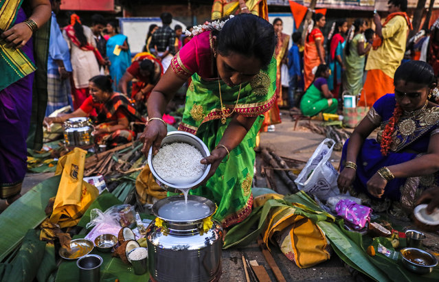 A Tamilian woman cooks pongal, a traditional rice dish, during the Thai Pongal festival celebration in Mumbai, India, 15 January 2020. Pongal, very popular in South Indian states, is a famous dish made of rice boiled in milk with jaggery and other sweeteners. Thai Pongal is a famous harvest festival celebrated by Tamilians all across the world, widely celebrated on 15 January. The significance is the offering of thanks to the sun and weather for helping obtain a bountiful harvest. (Photo by Divyakant Solanki/EPA/EFE)