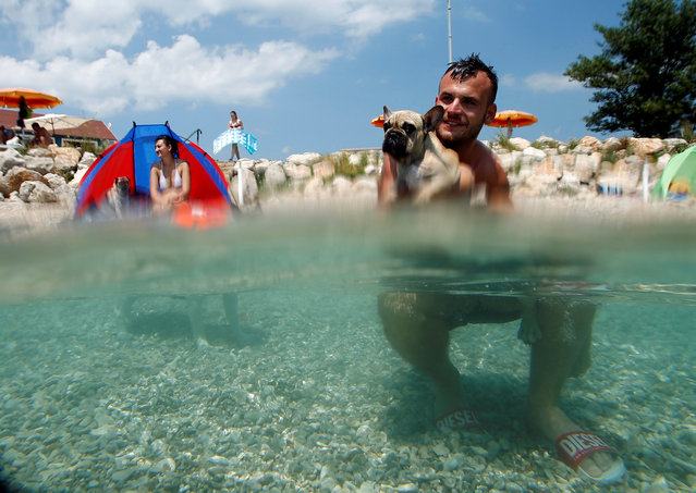 A man is pictured with his dog at the dog beach and bar in Crikvenica, Croatia, July 12, 2016. (Photo by Antonio Bronic/Reuters)
