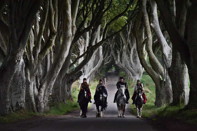 Four actors on horseback dressed in Game of Thrones related costumes carry the Queen's Baton as they make their way way along the Dark Hedges on August 29, 2017 in Antrim, Northern Ireland. The Dark Hedges near Stranocum in County Antrim featured as the King's Road in season two of Game of Thrones and has become a tourist mecca for fans of the television series along with other filming locations in the province. The Queen's Baton Relay is currently on a tour of the United Kingdom as it makes its way around Europe in preparation for the 2018 Commonwealth Games in Australia. (Photo by Charles McQuillan/Getty Images)
