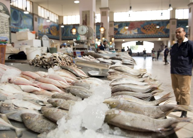 """A fishmonger stands in an almost empty isle in the Kuwait Fishmarket in Sharq, Kuwait City, August 25, 2015. A consumer boycott in Kuwait has forced down the retail price of fish in a sign of the difficulties which Gulf governments may face as they try to save money by cutting food subsidies. After the price of pomfret, known to Gulf Arabs as zubaidi or the """"king of fish"""". (Photo by Stephanie McGehee/Reuters)"""