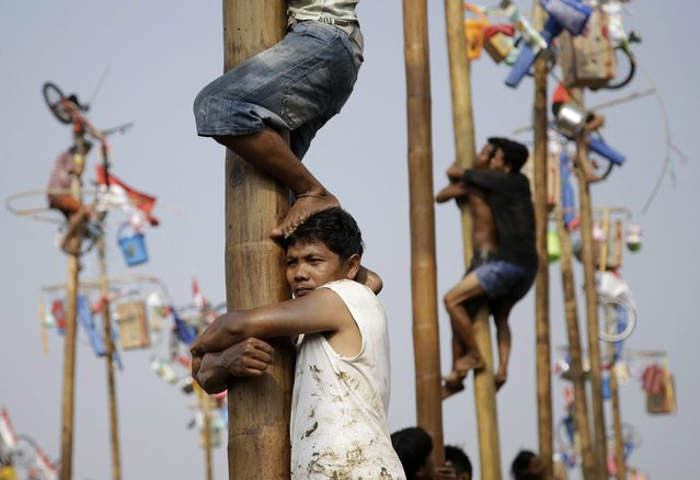 Participants struggle to reach the prizes during a greased-pole climbing competition held as a part of the independence day celebrations in Jakarta, Indonesia, Sunday, August 17, 2014. (Photo by Dita Alangkara/AP Photo)