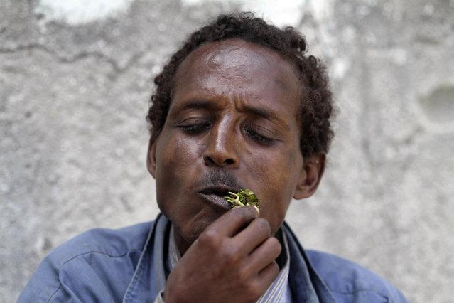 A man chews khat in Mogadishu August 10, 2014. (Photo by Thomas Mukoya/Reuters)