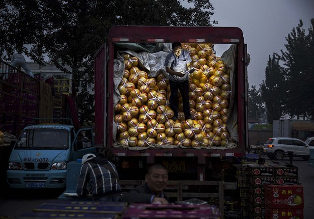 A Chinese fruit vendor fixes a light as he stands on a truck at a local market on September 26, 2014 in Beijing, China. China is challenged to ensure its food supply keeps pace with its population as more farmers leave the agricultural work force for jobs in the cities. Diets and lifestyles have also been altered by the rising affluence of China's growing middle class and its increasing demand for meat. (Photo by Kevin Frayer/Getty Images)