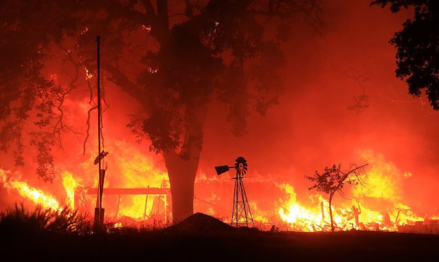 A two-story structure burns in a subdivision off Morgan Valley Road as a wildfire burns in Lower Lake, Calif., Saturday August 13, 2016. More evacuation orders have been issued as the wildfire grows in Northern California, threatening the lake community of about 1,300 that was evacuated a year ago because of a destructive fire. (Photo by Kent Porter/The Press Democrat via AP Photo)