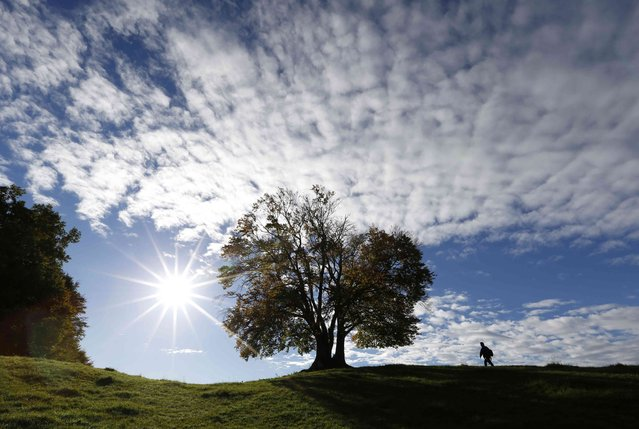 A man is pictured while hiking on a sunny day in Landstetten near lake Starnberg, southern Germany, October 14, 2014. (Photo by Michaela Rehle/Reuters)