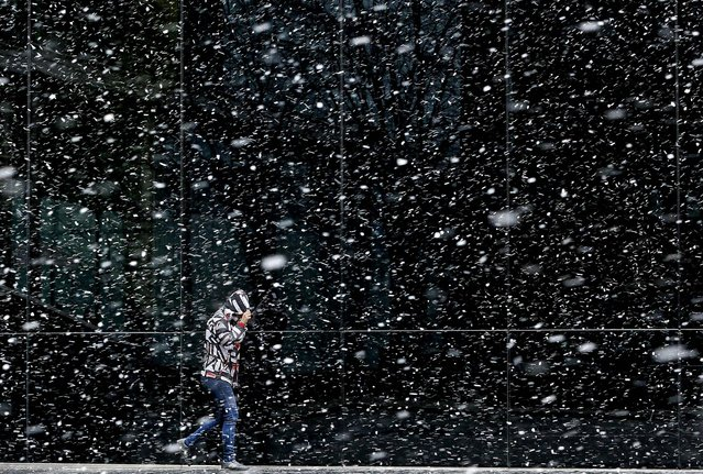 A pedestrian walks through the snow in London, on March 11, 2013. (Photo by Kirsty Wigglesworth/Associated Press)