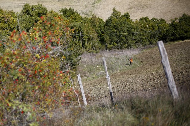 Francesco Vicarelli stands in position during a hunt in Castell'Azzara, Tuscany, central Italy, October 23, 2015. (Photo by Max Rossi/Reuters)