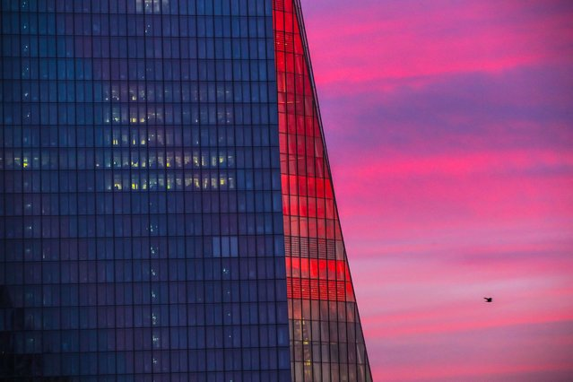 The facade of the headquarters of the European Central Bank (ECB) is tinged by the colours of the rising sun in Frankfurt am Main, western Germany, on February 18, 2021. The European Central Bank announced on February 18, 2021 a drop of a third of its profit in 2020 over one year, seen as the consequence of a weak dollar and falling interest despite its expansive policy in the face of the Covid-19 pandemic. (Photo by Armando Babani/AFP Photo)