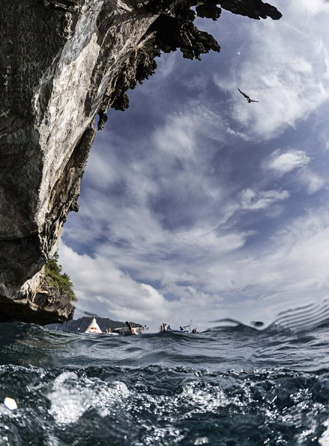 In this handout image provided by Red Bull, Alain Kohl of Luxembourg dives from a 25 metre rock at Viking Caves in the Andaman Sea during competition on the fifth day of the final stop of the 2013 Red Bull Cliff Diving World Series on October 24, 2013 at Phi Phi Island, Thailand. (Photo by Samo Vidic/Red Bull via Getty Images)