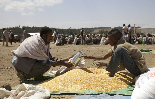 A farmer receives grain at an emergency food aid distribution in the village of Estayish in Ethiopia's northern Amhara region, February 11, 2016. (Photo by Katy Migiro/Reuters)