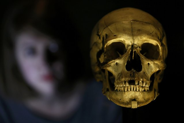 """An assistant poses with a human skull owned by Sarah Bernhardt during the press preview of the exhibition """"Shakespeare in Ten Acts"""" at the British Library in London, Britain April 14, 2016. (Photo by Stefan Wermuth/Reuters)"""