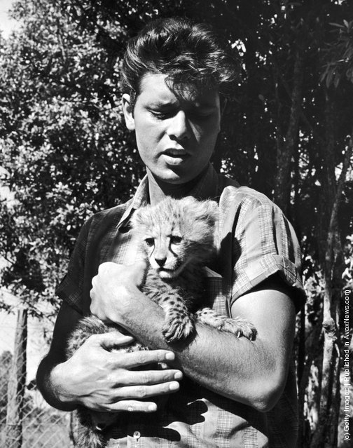 English pop singer Cliff Richard with a cheetah cub during a visit to the game-keepers' lodge at the Nairobi Game Park, Kenya, 15th February 1963
