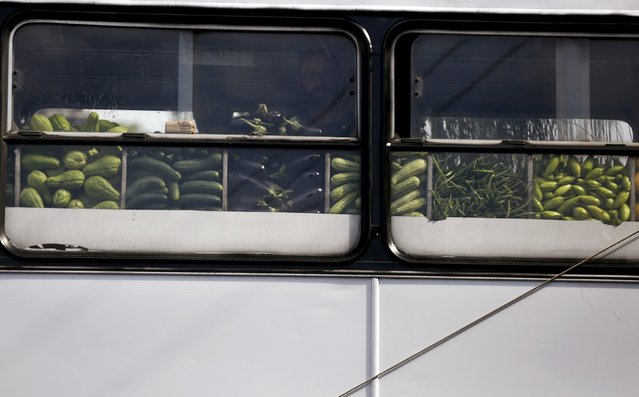 A man looks for fruits to buy inside a bus called Sacolao in Santa Teresa neighborhood in Rio de Janeiro, Brazil, July 7, 2015. (Photo by Pilar Olivares/Reuters)