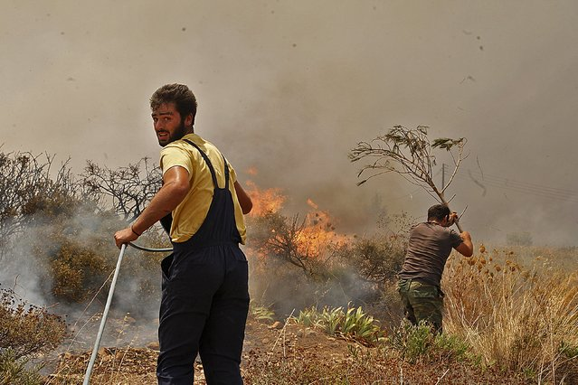 Local residents try to extinguish a wildfire raging at the village of Neapoli in the region of Laconia in Peloponnese, southern Greece July 17, 2015. (Photo by Panagiotis Kouros/Reuters/Eurokinissi)