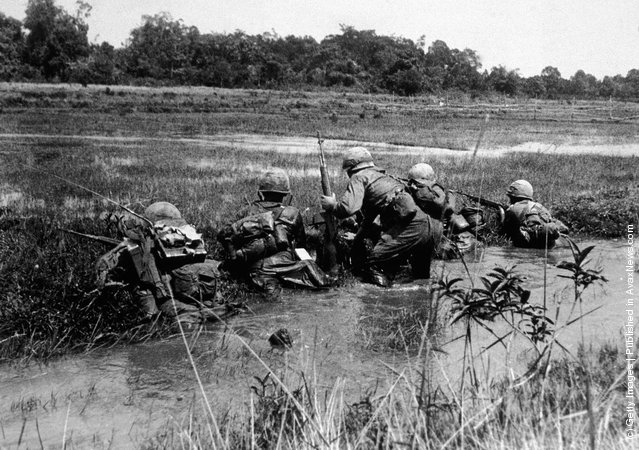 American army combat platoon leader Second Lieutenant John Libs (center) of 2nd platoon, C Company, 2d Battalion, 16th Infantry Regiment, 1st Division, surveys the situation with his men from the relative safety of a watery rice paddy as they prepare to advance on a Viet Cong sniper position, Vietnam, mid 1960s. Libs and the rest of 2nd Platoon participated in the battle of Xa Cam My/Operation Abilene in April 1966 during which Charlie Company suffered 82% casualties